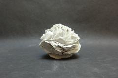 Feuillets de porcelaine, diamètre12cm.